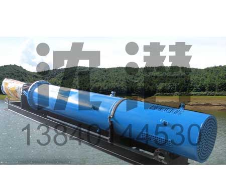 QJ潜水泵 (8)
