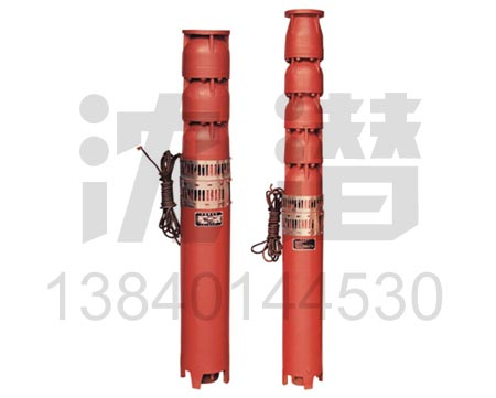 QJ潜水泵 (5)