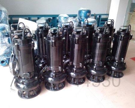 污水泵(3)
