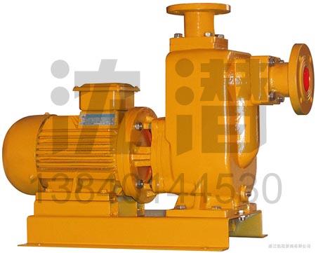 污水泵(5)
